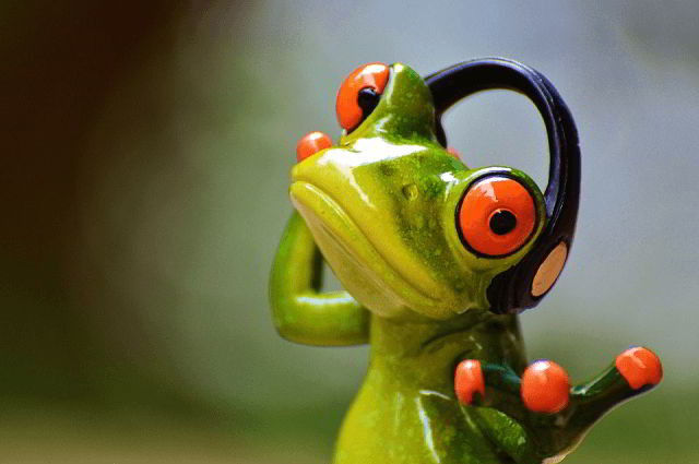 Screaming Frog: cos'è e come funziona