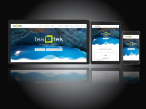 WeMaxe works TeaTek WebSite