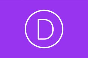 WeMaxe Divi Logo